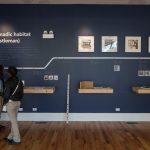 Forms of Imagination/Chicago Architectural Biennial