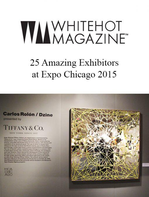 25 Amazing Exhibitors at Expo Chicago 2015