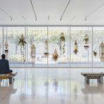 Tropicalizia Installationview